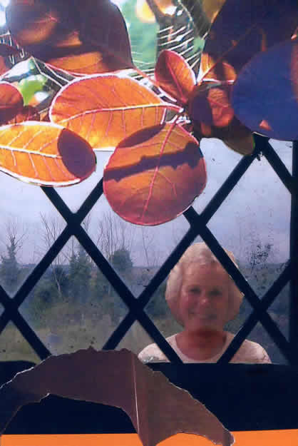 208 - and Margie will smile and make everything say yes. Collage by David Smith